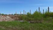 Зелёную зону Гнусино отдают под строительство цеха ЖБИ