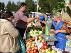 Ярмарка «Петровская» состоится в эту субботу