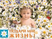 Завтра в Кирове пройдёт акция «Подари мне жизнь!»