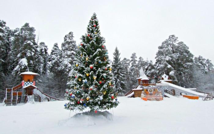 В новогодние праздники в Кирове ожидается наплыв туристов