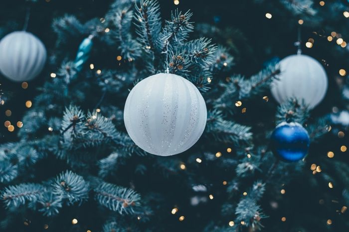 Главную ёлку Кирова откроют 24 декабря