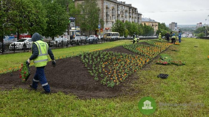 В Кирове будет разработана пятилетняя программа озеленения