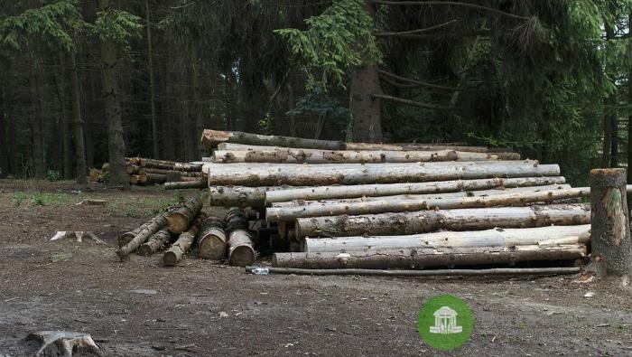 В Кировской области руководство компании обвиняют в мошенничестве на 64 млн рублей