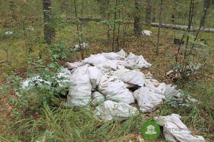 В кировских лесах обнаружены новые свалки с останками животных