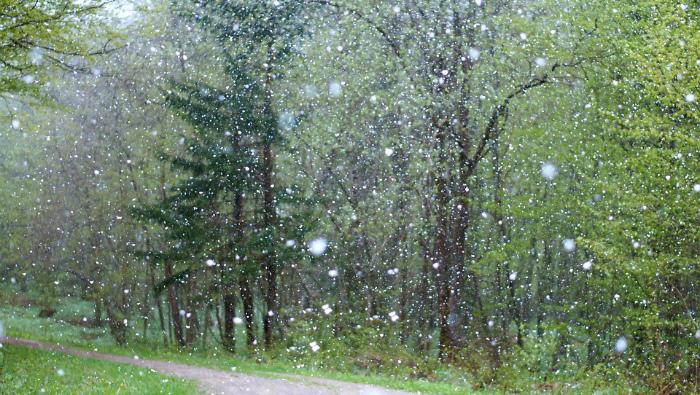 Погода 26 апреля