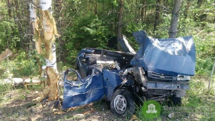 В Верхнекамском районе авто врезалось в дерево, водитель погиб