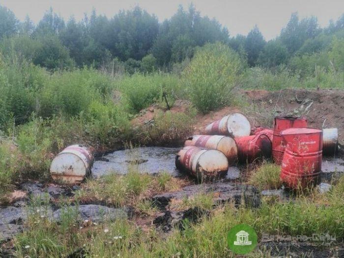 Вместо артезианской скважины в Кирово-Чепецком районе активисты ОНФ обнаружили токсичное болото