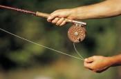 В Кировской области рыбаки преуспели в освоении квот