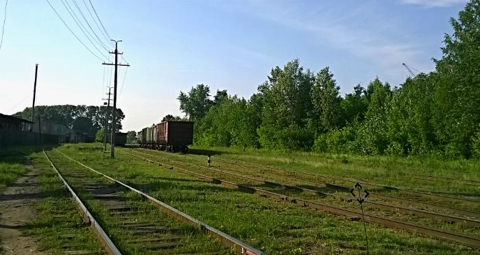 Трагедия на железной дороге: ребенок попал в реанимацию
