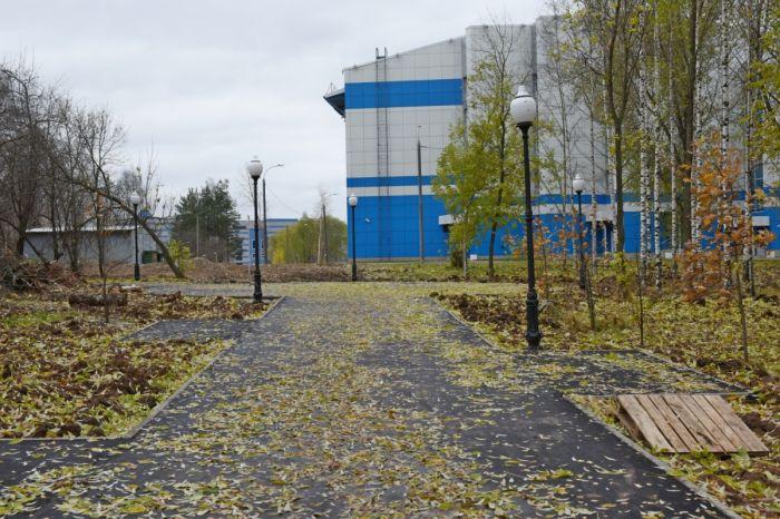 Из Кочуровского парка вновь украдены саженцы деревьев