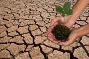 В 5 млн рублей оценили ущерб экологии области