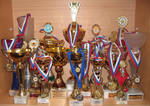 Диорама собрала награды кировских спортсменов