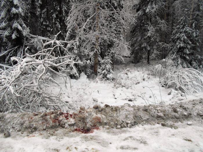 Нижегородцы, убившие таксиста, признаны виновными