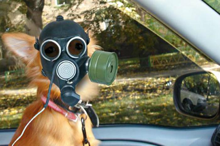 Жители юго-западного района снова страдают от неприятного запаха