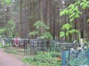 Кладбище в Опаринском районе «залезло» в жилую зону