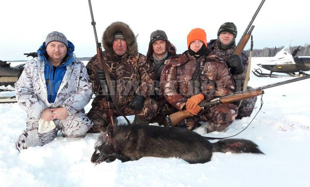 Охотники их Кировской области добыли волка необычного окраса