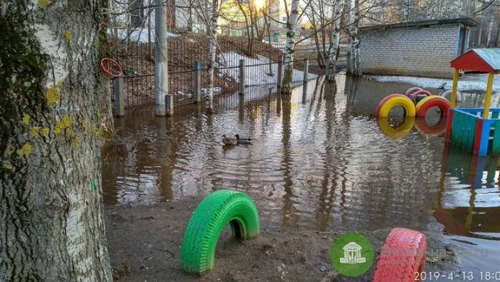 В кировском детском саду лужа превратилась в пруд с утками