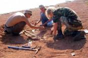 Мировой научной общественности сообщат о Котельническом местонахождении парейазавров