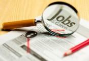 Число безработных в Кирове снизилось на четверть
