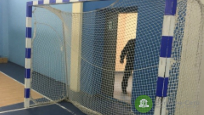 Осуждена заведующая спорткомплекса в Кирово-Чепецке, по вине которой на ребенка упали ворота
