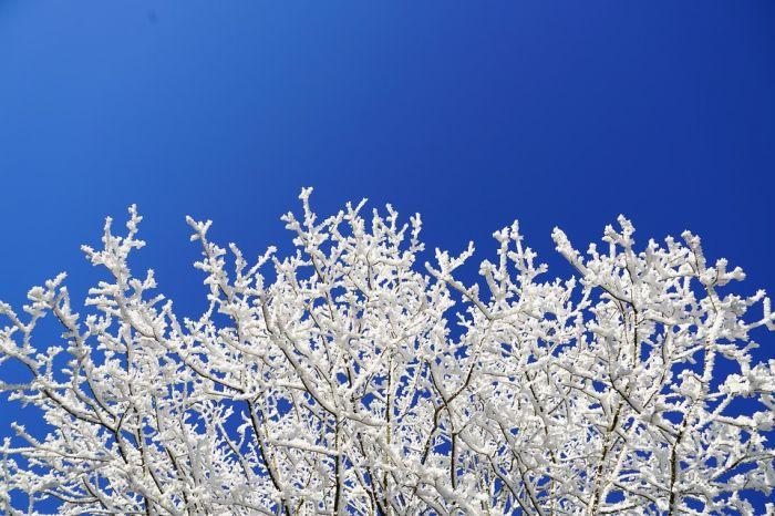 Погода 12 декабря