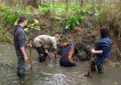 Палеонтологи в Котельниче закончили раскопки мамонтёнка