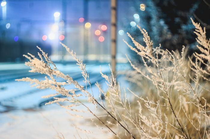 Погода 18 ноября