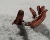 Пенсионерка из-за мороза не смогла дойти до дома, замерзнув по дороге