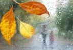 Осенний дождь не желает пока покидать Киров