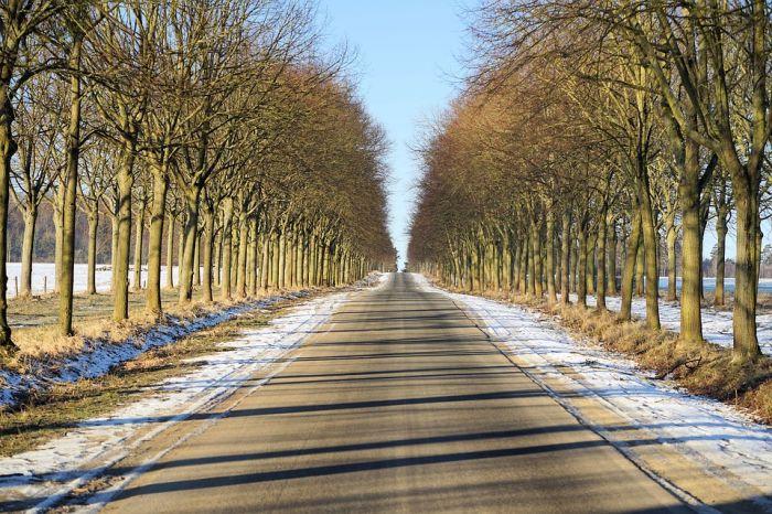 В области продолжится проект «Безопасные и качественные дороги» с участием общественности
