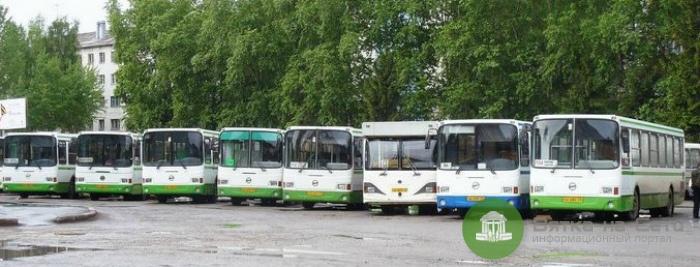 Для гостей «Гринландии» организовали дополнительные автобусы