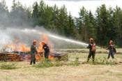 В регионе по состоянию на 25 июля горит 2,57 га лесов