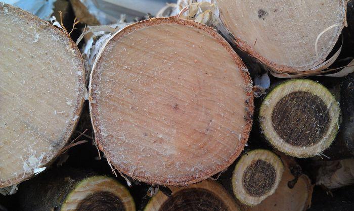 В Орловском районе кочегара насмерть придавило брёвнами