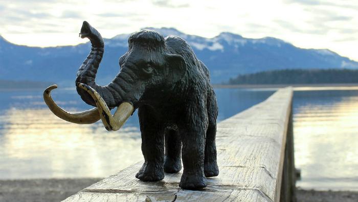 Кировчане предлагают установить скульптуру мамонта