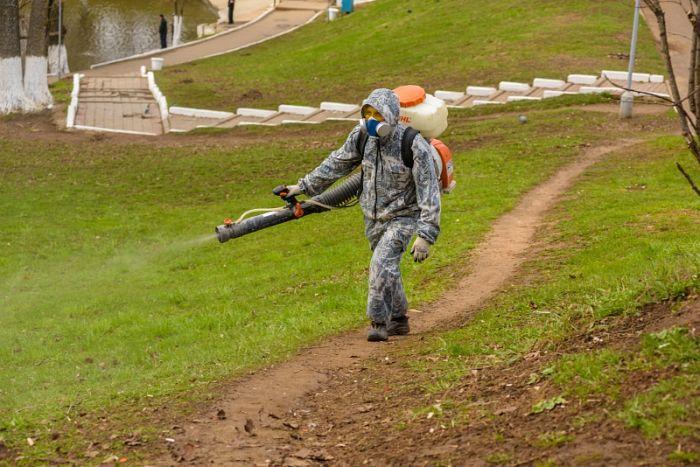 До конца недели в Кирове обработают все кладбища от клещей
