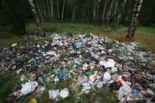 Помоги очистить лес от мусора!
