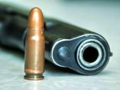 Кировским полицейским пришлось стрелять по колёсам