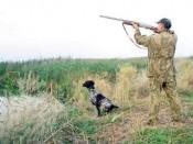 На территории Кировской области запретили охоту