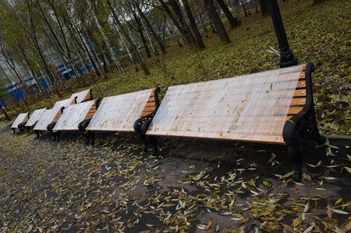 В Кочуровском парке появятся дополнительные скамейки и вазоны