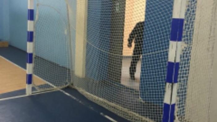 Возбуждено уголовное дело по факту падения футбольных ворот на 13-летнего мальчика