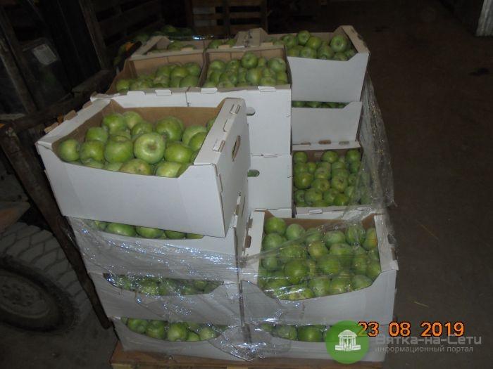 В Кирове уничтожили 510 кг яблок и груш