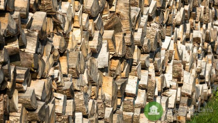 В Свече на директора школы завели уголовное дело из-за дров