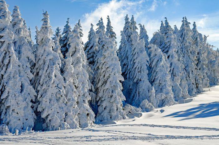 Погода 3 января