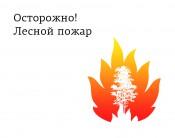 В области зафиксирован первый лесной пожар