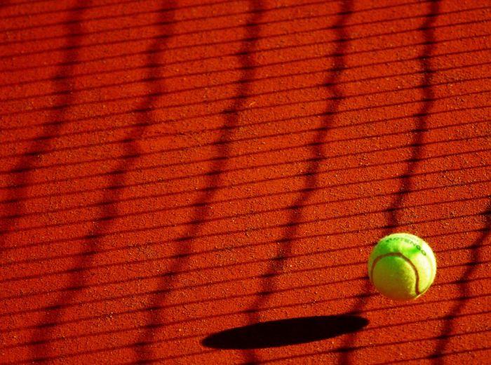 Ставки на спорт: 5 советов новичкам