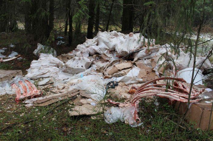 Активисты ОНФ обнаружили очередную свалку с останками животных