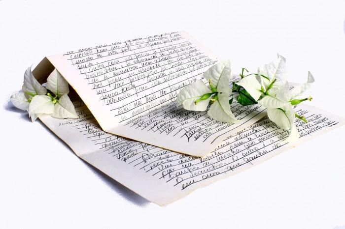Кировчане могут стать соавторами самой большой книги признаний в любви