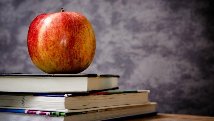 Из-за снегопада в кировских школах отменяют занятия