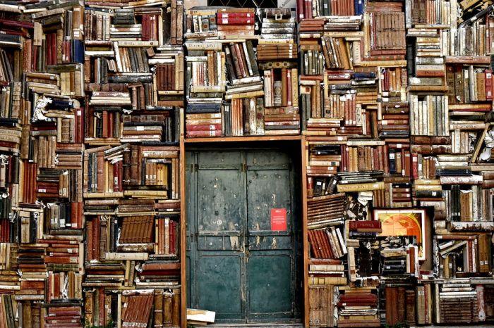 В честь Дня знаний в кировских библиотеках пройдут праздничные программы