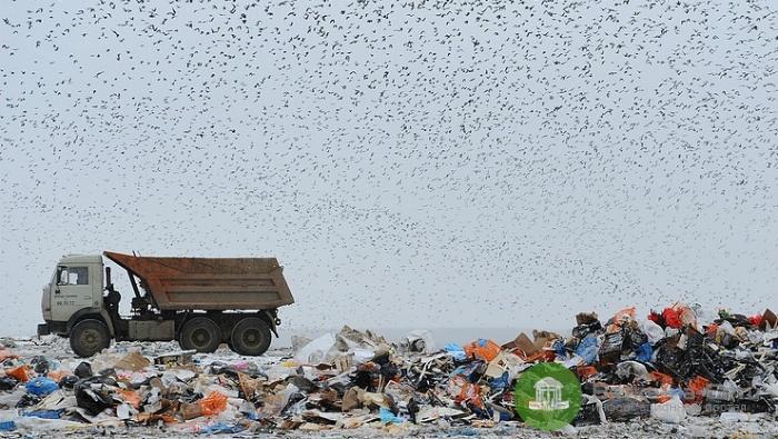В области назревает «мусорный» коллапс: Строительство  полигона в Осинцах признано незаконным
